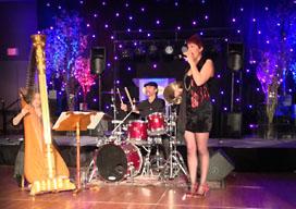 Event Harp Music