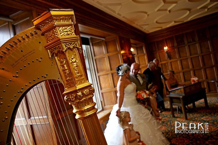 Harp Angel Wedding Oak Room